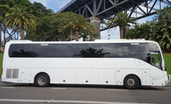 BCI LARGE (30-55 tourists) for private tours in sydney