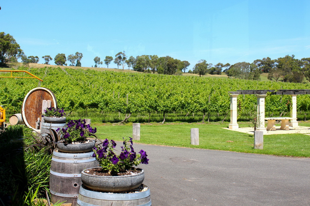 Yarra Valley Private Winery  Private Tour