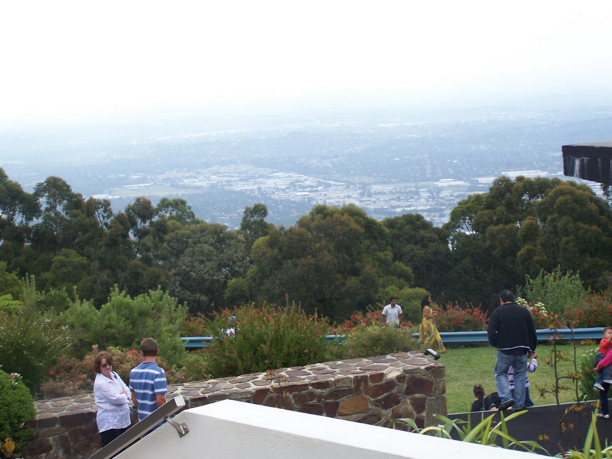 Puffing Billy Private Tour with Healesville zoo