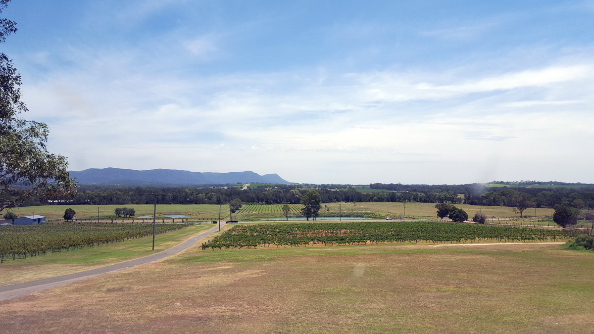 Hunter Valley Private Tour