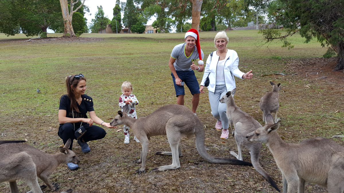 Australian Wild Animals Watching and Aboriginal Sacred Places Private Tour