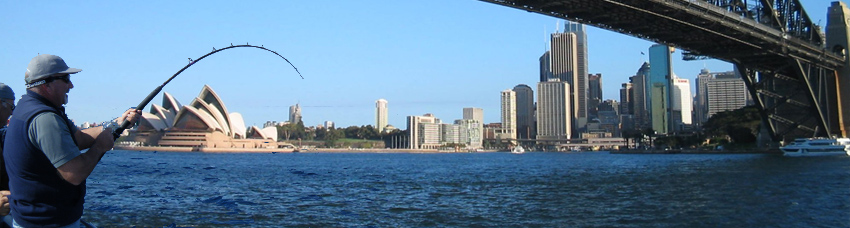 sydney harbour bridge fishing panorama