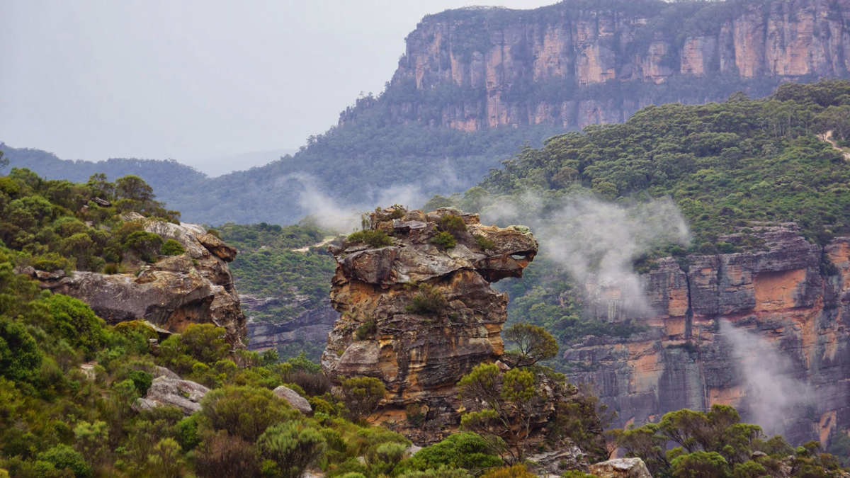 Blue Mountains Private Tour Photo10
