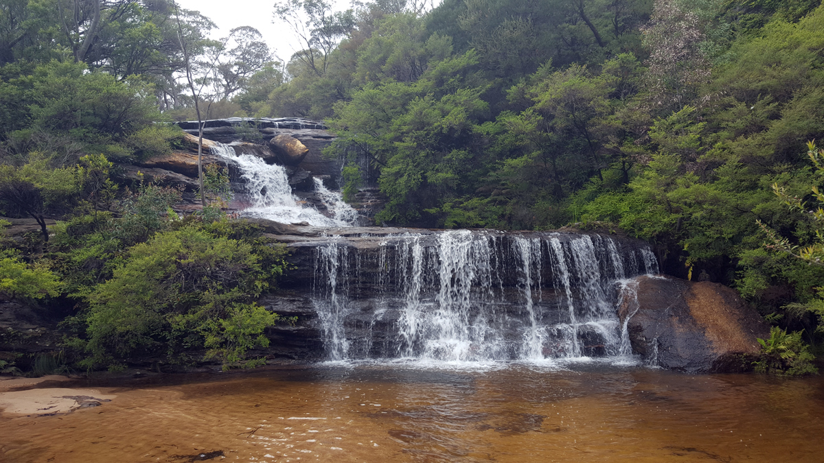Blue Mountains Private Tour Photo13