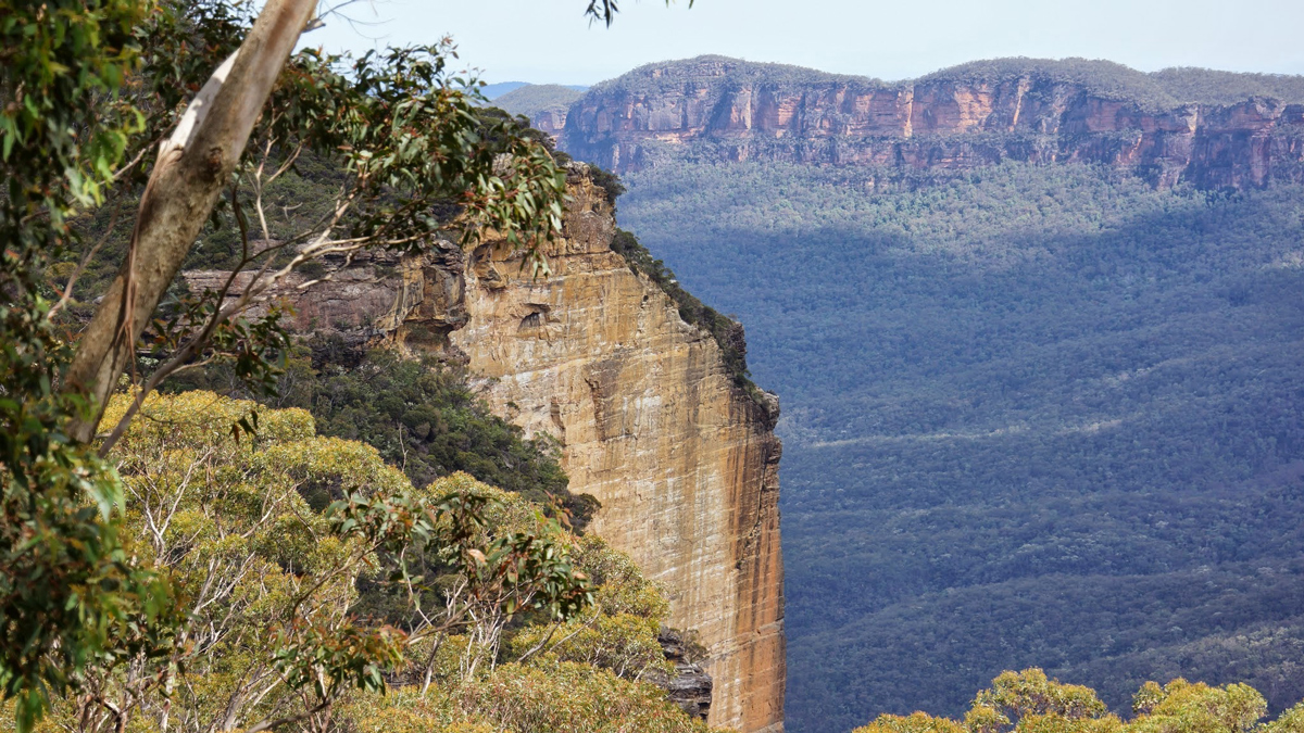 Blue Mountains Private Tour Photo4