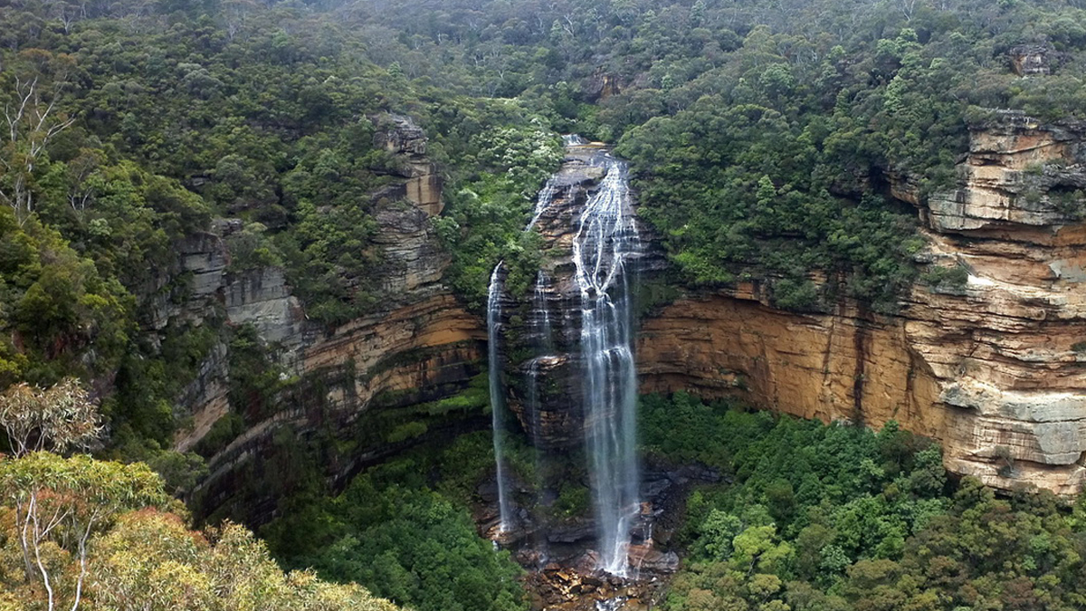 Blue Mountains Private Tour Photo6